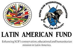 Your Latin america funds brilliant