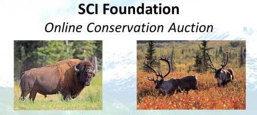Online Auction Photo