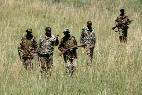A squad of rangers patrol through thicket where poachers have been known to hide in Maasai Mara Game Reserve April 4, 2008. A rocky cliff overlooking the Maasai Mara Game Reserve marks a new front line in a conflict between people and wildlife that threatens the revival of Kenya's $1 billion tourism industry. Riots and ethnic violence that exploded after a disputed December 27 vote scared away almost all the foreign holidaymakers. The disappearance of tourist dollars has disturbed the delicate balance between predators in the reserve and the Maasai tribesmen living next to it, by causing the breakdown of a compensation scheme meant to stop them hunting lions.   To match feature KENYA-WILDLIFE/   REUTERS/Radu Sigheti  (KENYA)