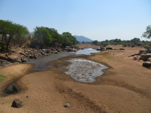 H28 Hippo pool peak dry.JPG