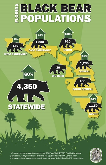 bear-pop-infographic-resized.jpg