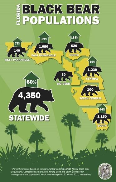 bear-pop-infographic-resized.jpg