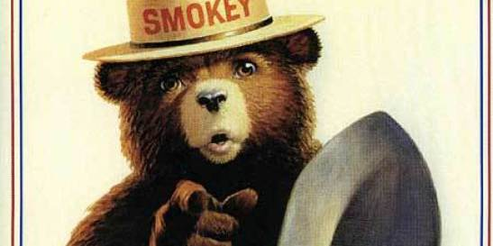 o-SMOKEY-BEAR-SPACE-facebook.jpg
