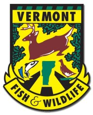 VFW_Logo_RGB