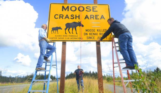 Moose Sign. Photo by Kelly Sullivan.Peninsula Clarion Tom Netschert, Ron McAlpin, Jesse Bjorkman. Members of Board of Directors for the Alaska Kenai Peninsula Chapter SCI. 8.29.2014.
