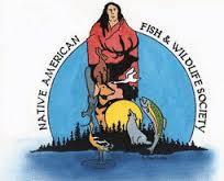 NAFWS Logo