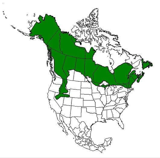 Moose Range